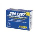 STAPLES DUO-FAST 5010C 5/16 IN 5000/PAK
